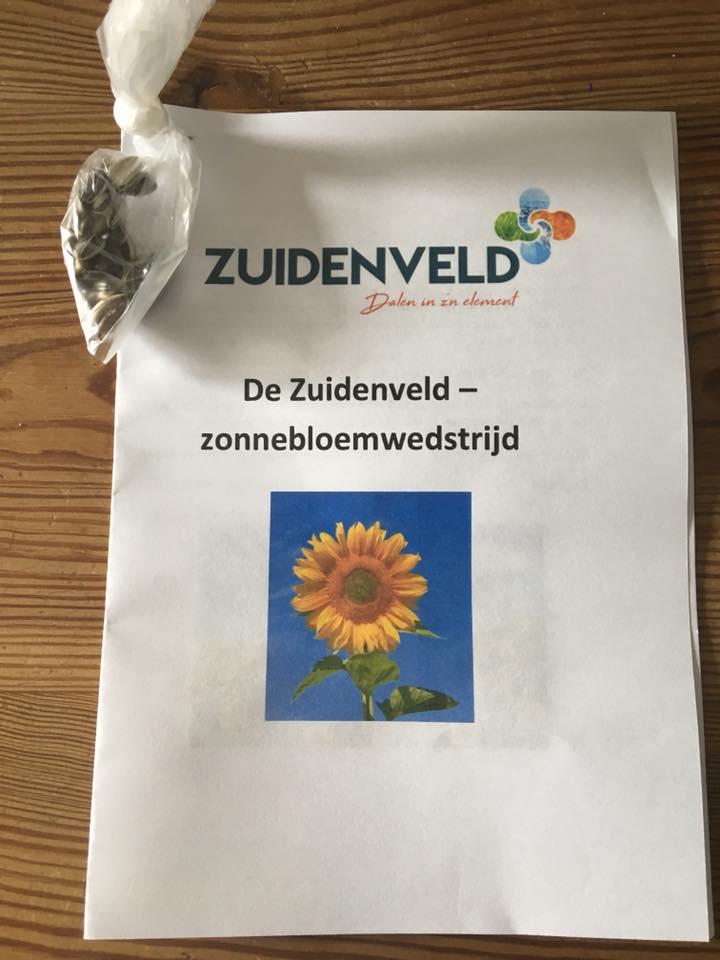 Zuidenveld zonnebloemwedstrijd